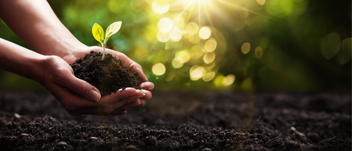 Onze planeet, onze toekomst en hoe verder?